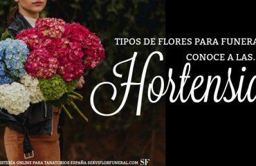 Las Hortensias flores para funerales