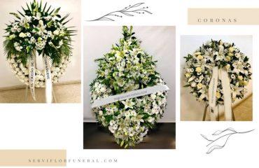margarita flor blanca para funerales